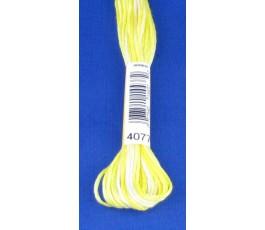 DMC 4010
