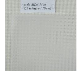 Kanwa plastikowa 14 CT 21 x 28 cm, przezroczysta