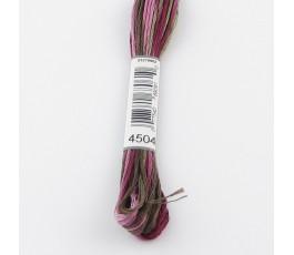 DMC Coloris 4504