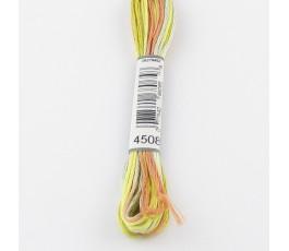 DMC Coloris 4508