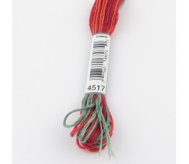 DMC Coloris 4517